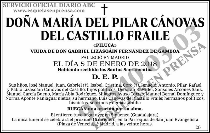 María del Pilar Cánovas del Casillo Fraile